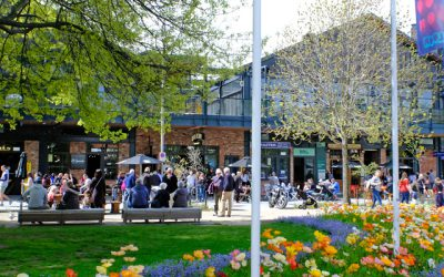 Future for Local Government workshops